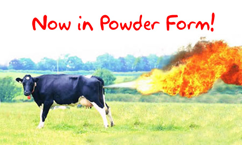 flaming_cow.jpg